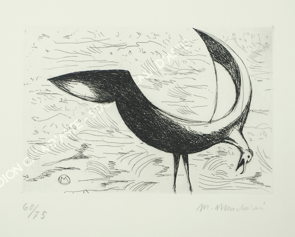 datazione Marlin 1895